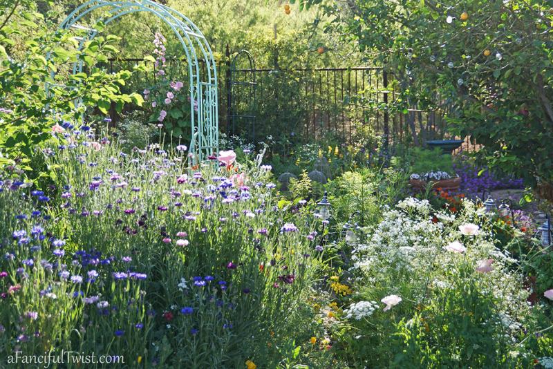 Secret garden 32