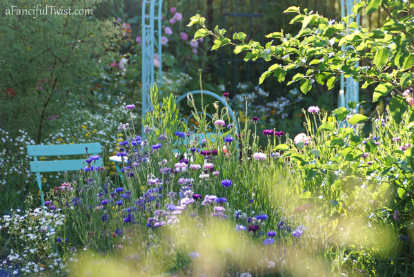 Secret garden 35