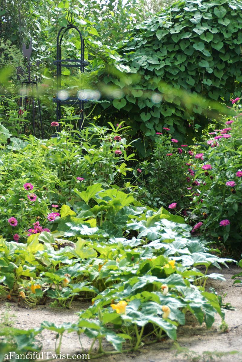 Studio and garden 31