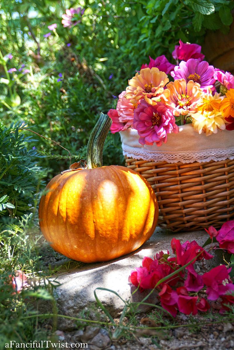 Welcome autumn magic 2