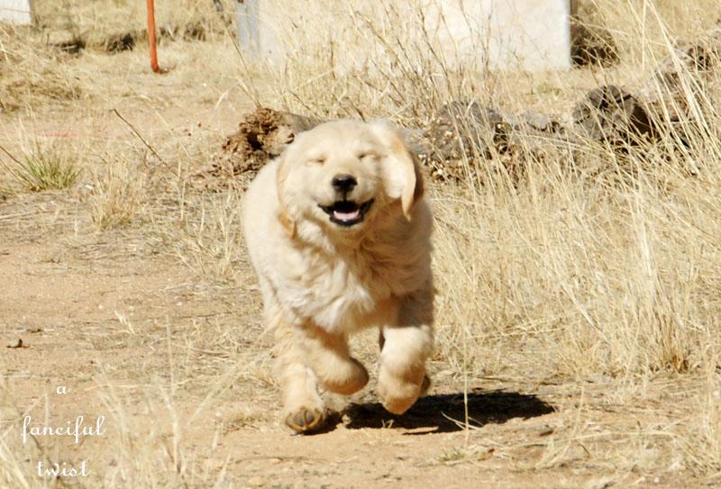 Miles happy