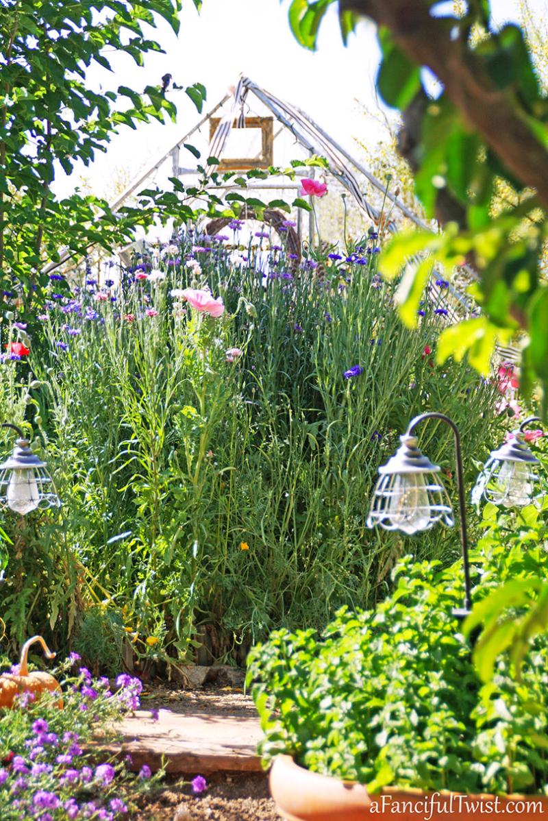 Secret garden 50