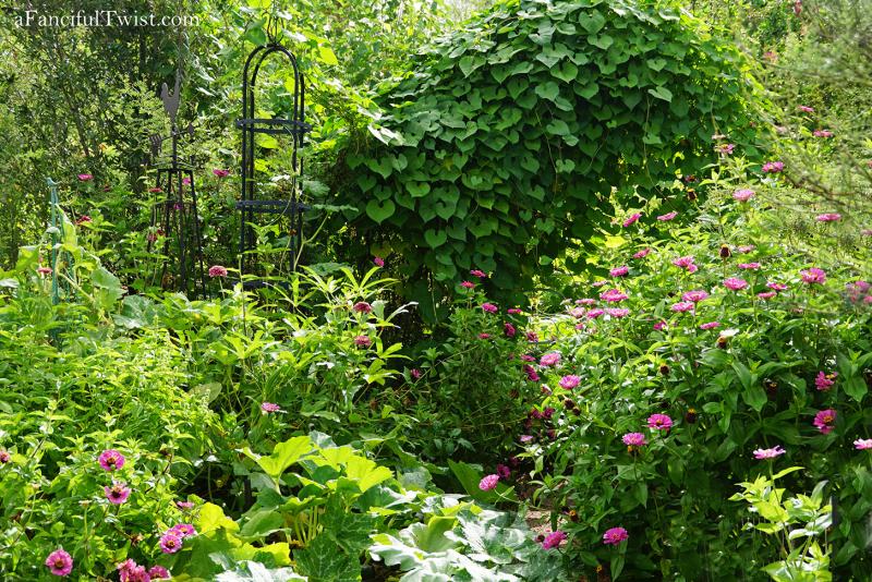 Studio and garden 17