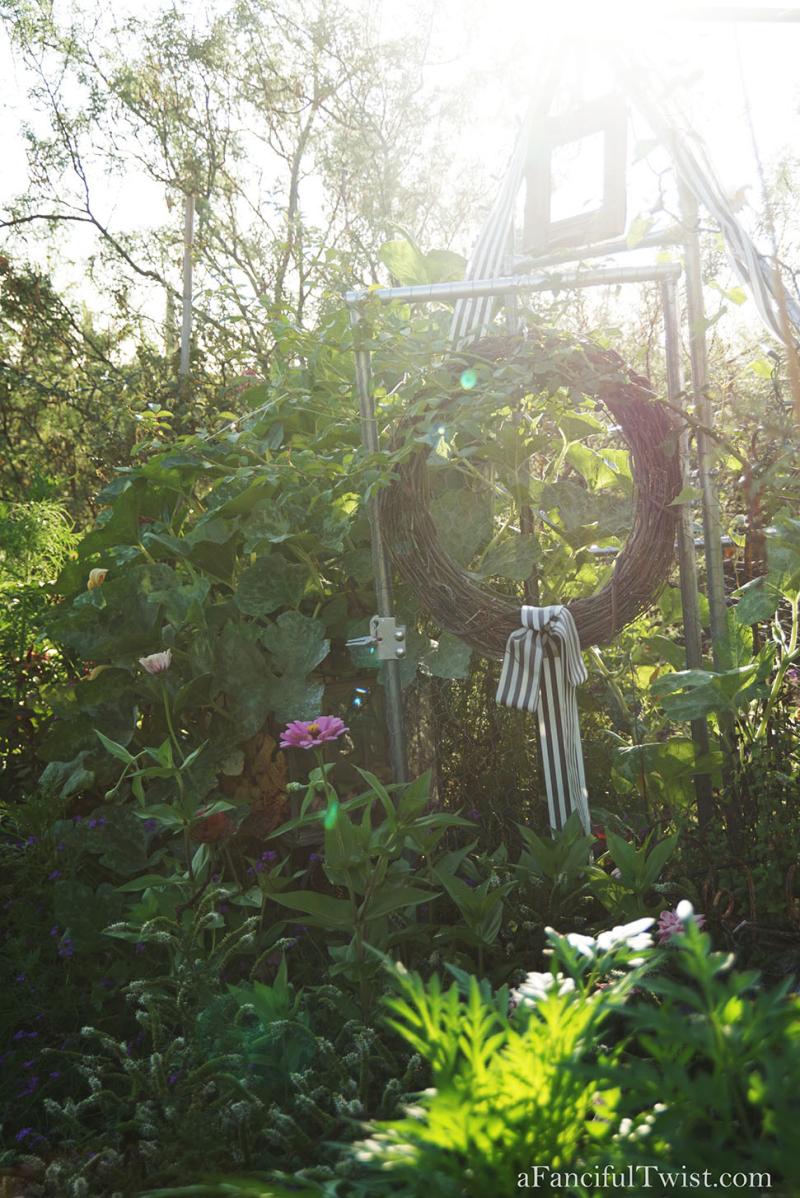 Thumbelina garden 3