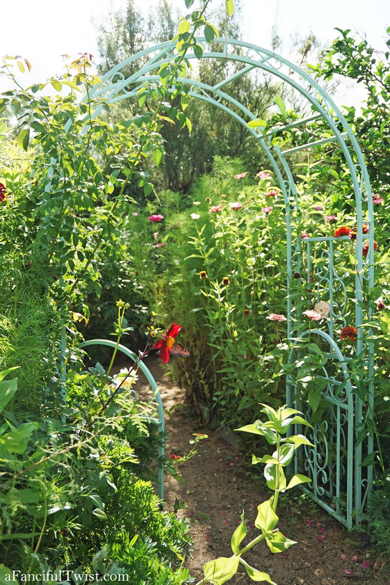 Studio and garden 25