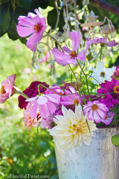 Studio blossoms 2