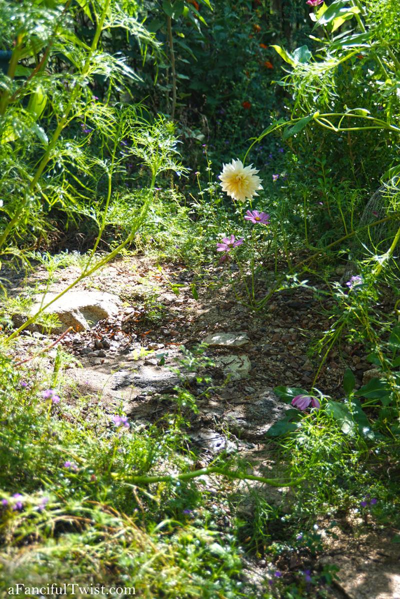 Butterfly summer 10