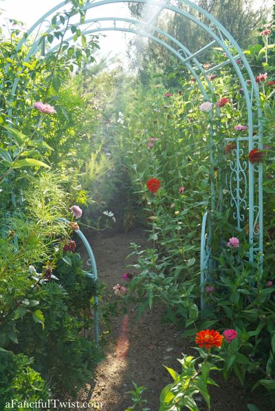 Cottage garden days 5