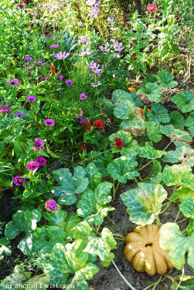 Cottage garden days 18