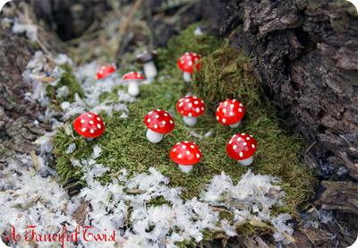 Enchanted_fungi_forest