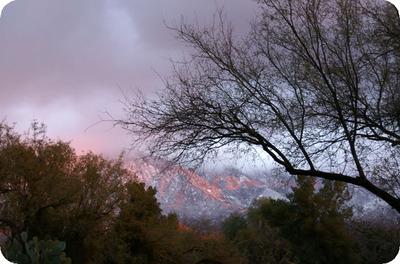 Pink_snowey_skies