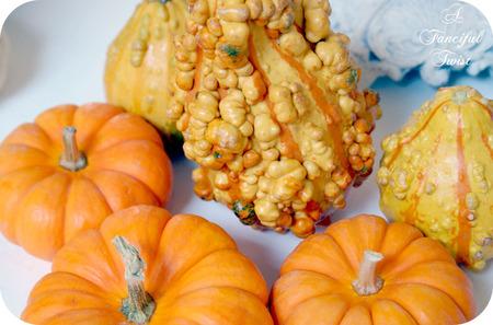 Pumpkin_11_2